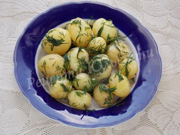 як приготувати молоду картоплю