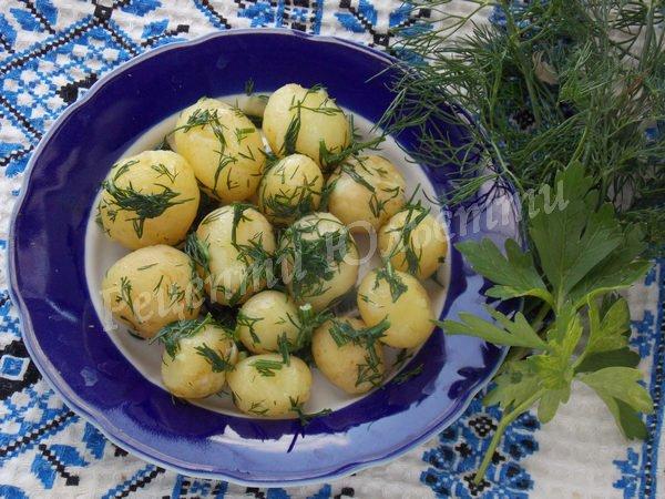 відварна молода картопля