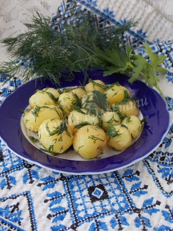 страва з молодої картоплі
