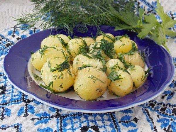 смачна молода картопля