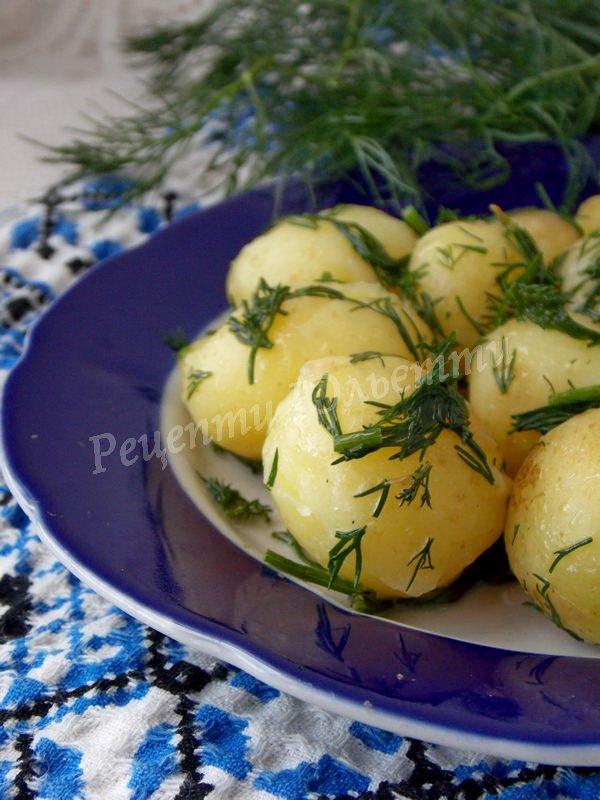 рецепт молодої картоплі з кропом
