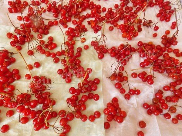 обсушуємо ягоди